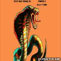 CIRCUIT NAGIN (ORIGINAL MIX) - Dj Dynamo Poster