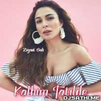 Kalbim Tatilde Remix - Ziynet Sali Poster