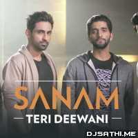Teri Deewani - Sanam Poster